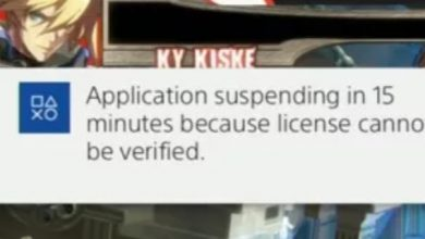 application-suspending-in-15-minutes-licence-cannot-be-verified
